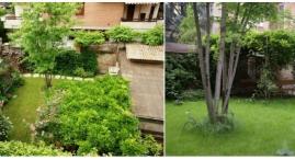 Particolari del giardino